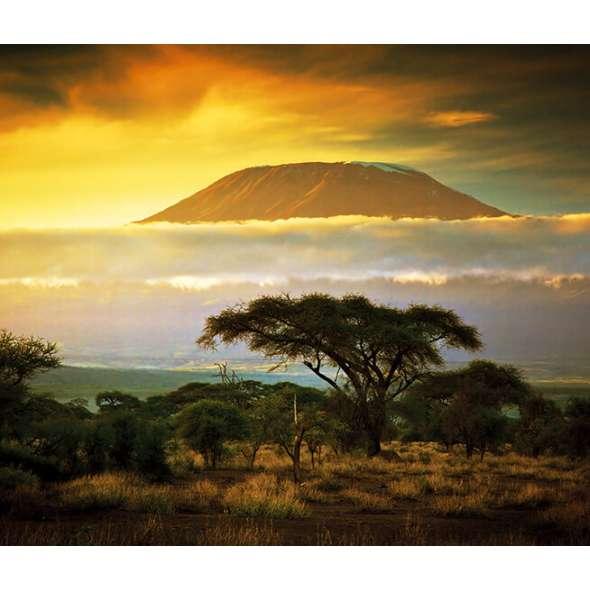 Calendar de perete Landscapes 2021