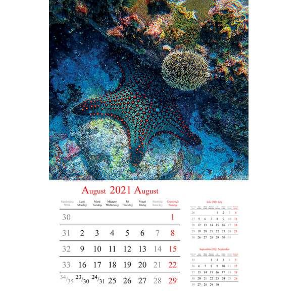 Calendar de perete Wild Life 2021